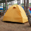 Campsite in the forest — Stock Photo #1953942