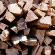 Firewood stack — Stock Photo #1958523
