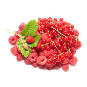 Pile of fruits — Stock Photo