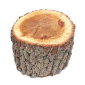 Wooden stump — Stock Photo