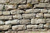 Brick stone's texture — Stockfoto