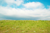 Green landscape with clouds. — Stock Photo
