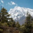 Himalayan mountain — Stock Photo