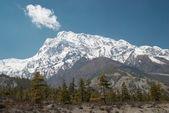 西藏雪山 — 图库照片