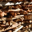 Firewood stack — Stock Photo