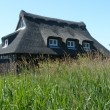 Foto Stock: Thatched Hde