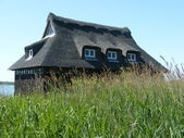 Thatched Hde — Stockfoto