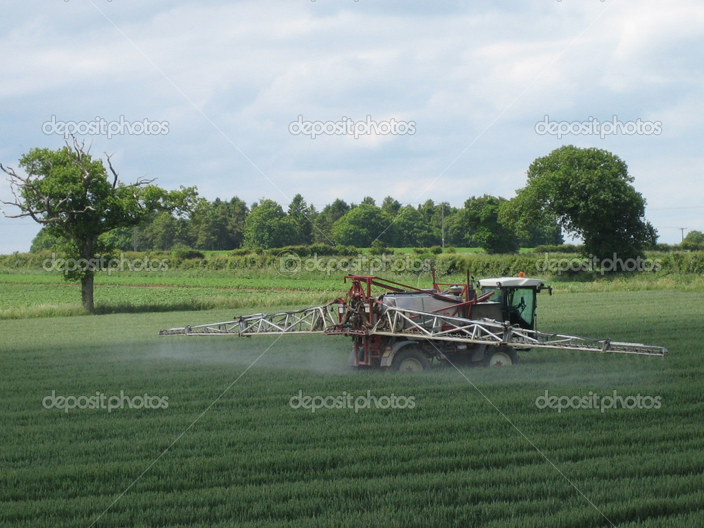 Crop spraying vehicle in field of young corn — Stock Photo #1983445