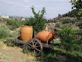 Ancient Georgian jugs for wine — Stock Photo
