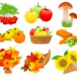 Stockvector : Autumn food set