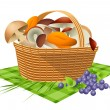 Royalty-Free Stock Vector Image: Basket with mushrooms