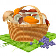 basket with mushrooms — Stock Vector