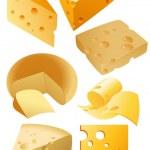 Cheese — Stock Vector #1637332