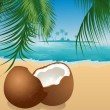 Coconut on the beach under palm tree — 图库矢量图片