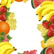 Fruit_frame — Stockvectorbeeld
