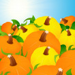 Pumpkin harvest - Stock Vector