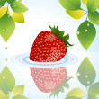 Strawberry in the water behind the tree - 