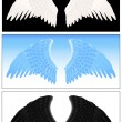 Angel wing set — Stock Vector