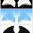 Stock Vector: Angel wing set