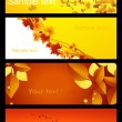 Autumnal background set — Stock Vector #1638302