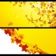 Royalty-Free Stock Vector Image: Autumnal backgrounds