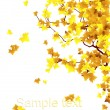 Royalty-Free Stock Vector Image: Autumnal_brunch