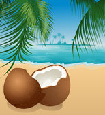 Coconut on the beach under palm tree — Vetorial Stock