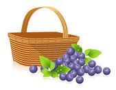 Bilberries — Stock Vector