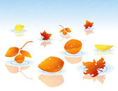 Autumnal leaf falling in the water — Stock Vector