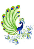 Peacock — Stock Vector
