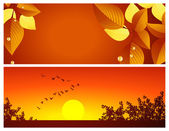 Two autumnal backgrounds — Stock Vector