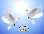 White_doves_holding_wedding_rings — Stock Vector