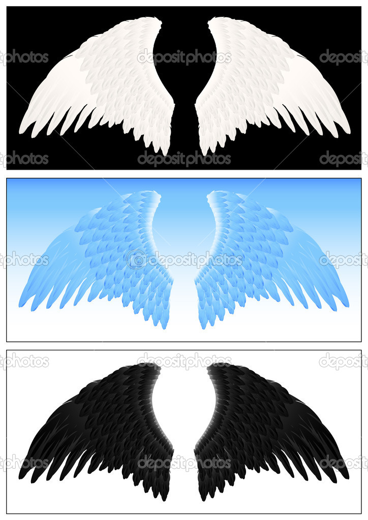 Angel wing set, vector illustration — Stock Vector #1638251