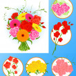 Flower collection — Stock Vector
