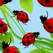 Ladybird seamless background — Stock Vector