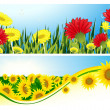 Summer backgrounds — Image vectorielle