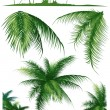 Tropical_leaf1 — Stock Vector