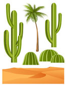 Cactus set — Stock Vector
