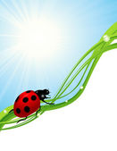 Ladybird on blue sky — Stock Vector