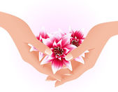 Hands holding tropical flowers — Stock Vector