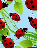 Ladybird seamless background — Stock Vector