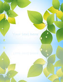 Leaf_reflection_in_the_water — Stock Vector