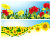 Summer backgrounds — Stock Vector