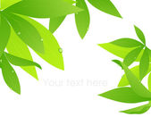 Tropical leaf branch — Stock Vector