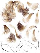 Hair — Stock Vector
