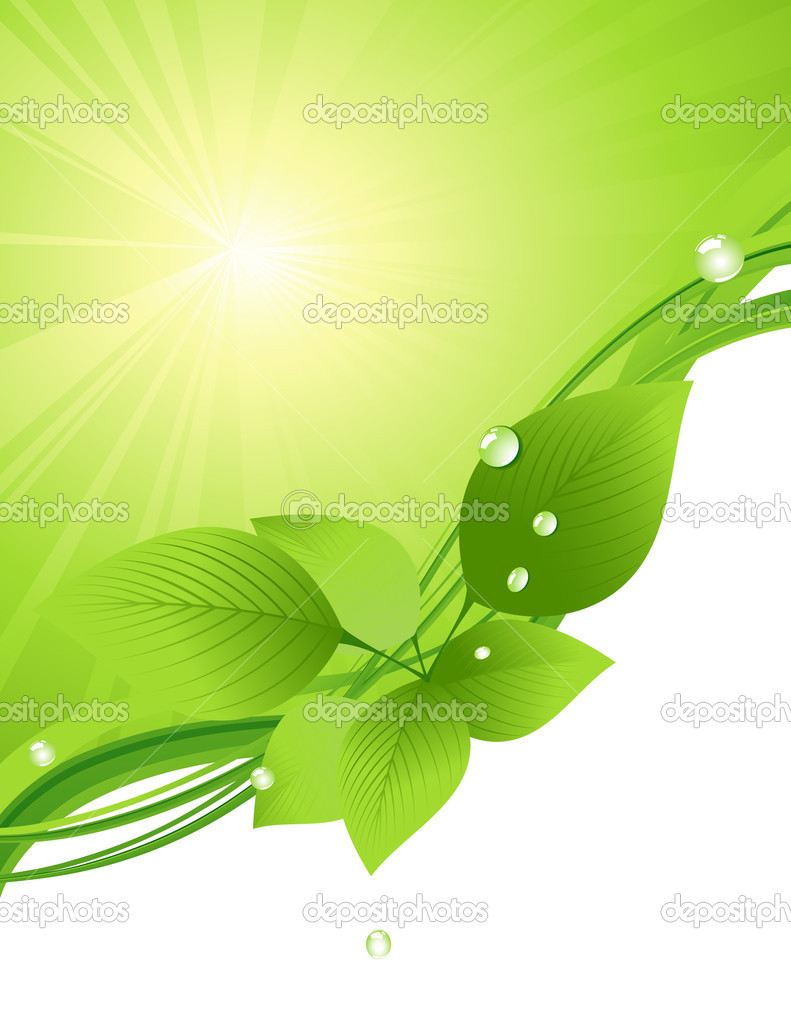 Beautiful green leaf background, vector illustration — Stock Vector #1708221