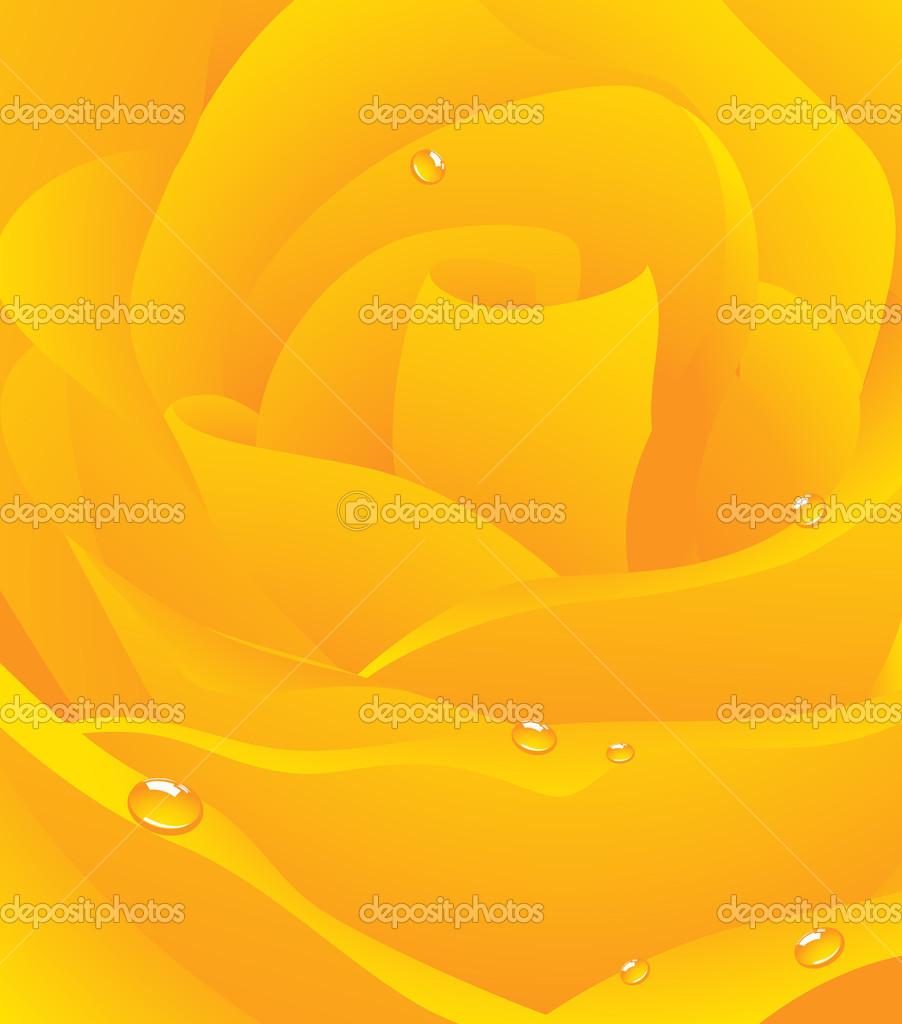 Yellow beautiful rose background,  vector illustration  Stock Vector #1708767