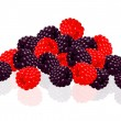 Raspberries and blackberries - Stock Vector