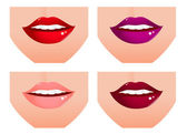 Woman lip set — Stock Vector