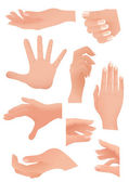 Human palm set — Stock Vector